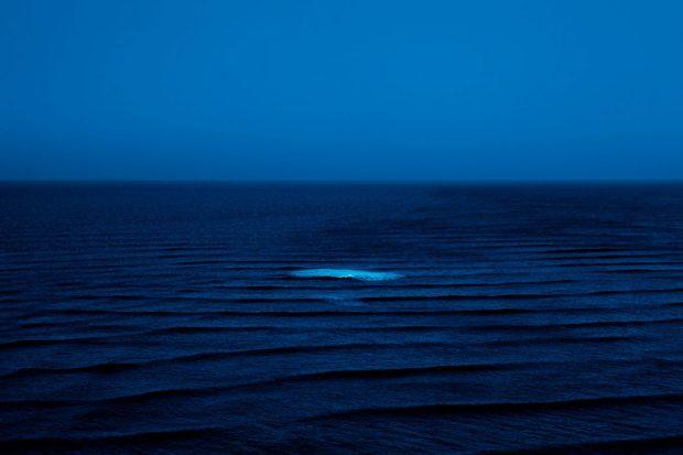 nicolas-janowski-adrift-in-blue-en-fola