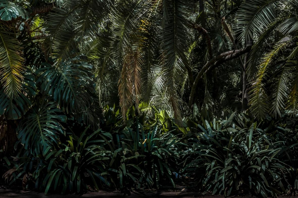 Cursi de Fotografia en Capital de Juan Pablo LIbrera IMG_3189