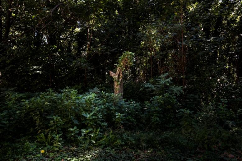 Fotos realizadas en el Curso Intermedio de Fotografía de Juan Pablo Librera